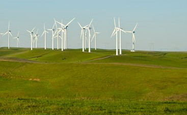 Greenergy wind mills