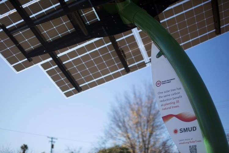 Urban League solar tree
