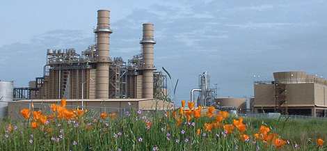 Cosumnes Power Plant
