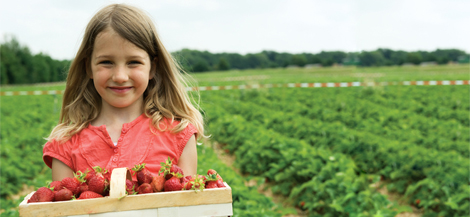 Girl with basket of strawberries